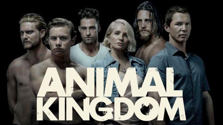Watch Animal Kingdom on Netflix