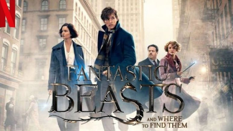 Watch Fantastic Beasts and Where To Find Them (2016) on Netflix