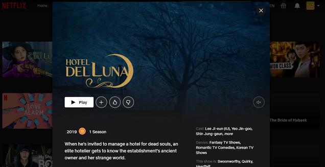 Watch Hotel Del Luna all episodes on Netflix 3