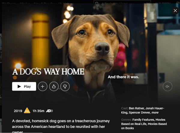 Watch A Dog's Way Home (2019) on Netflix 3