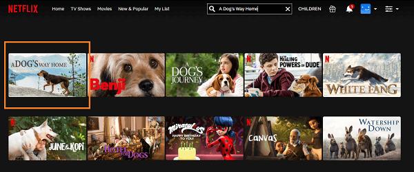 Watch A Dog's Way Home (2019) on Netflix 2