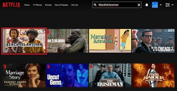 Watch BlacKkKlansman (2018) on Netflix