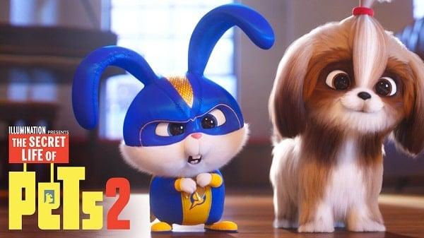 Watch The Secret Life of Pets 2 (2019) on Netflix
